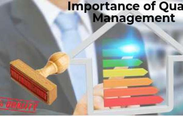 ISO 9001 organization as a success factor in manufacturing company