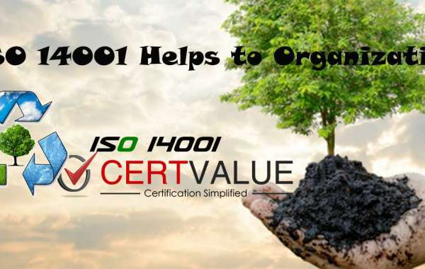 Do you really need a consultant for implementation of ISO 14001 Certification in Chennai?